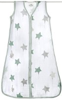 aden + anais 8063G Classic Sleeping Bag Up Up And Away, M (8063G)