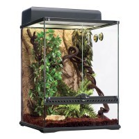 Hagen Exo Terra Terrarium Set Habitat Kit Rainforest - klein