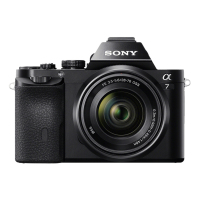 Sony α ILCE-7 + AF 28-70mm (ILCE7KB)